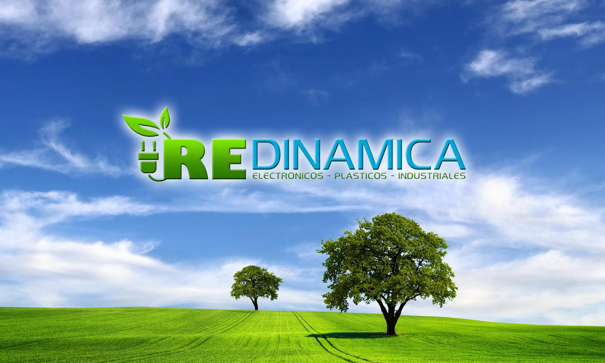 RE  Dinamica